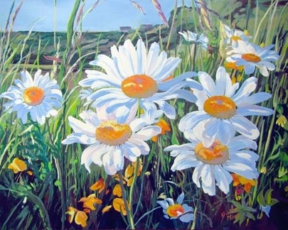 Archived Paintings - Ditch Daisies, 16x20