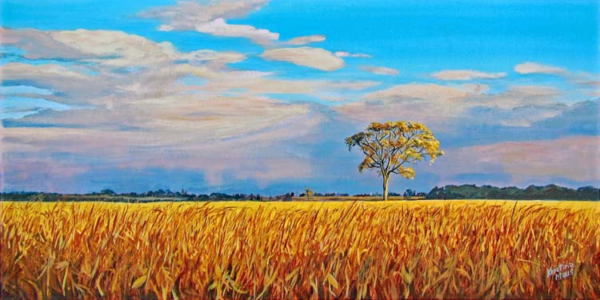 Archived Paintings - Jeff's Elm, 12x24
