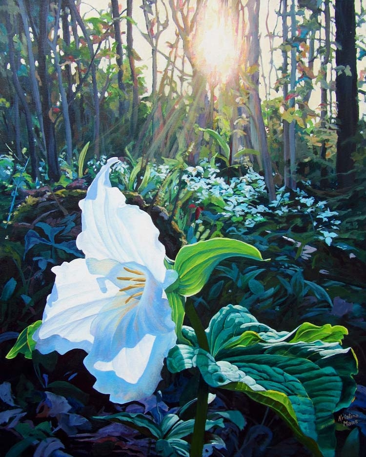 Archived Paintings - Morning Glory, 24x30