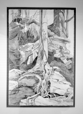 Rocks, Trees and Shadow Ribbons, 8x12, framed 14x18, Sold